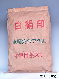 アクヌキスサ 大(2~3kg)